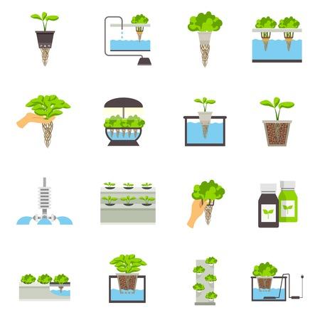 Conjunto de iconos planos de color elementos del sistema hidropónico ilustración vectorial que representa