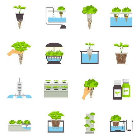 social system: Set of color flat icons depicting elements of hydroponic system vector illustration