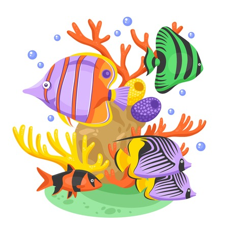 freshwater clown fish: Exotic tropical fish concept with fish and corals flat vector illustration Illustration