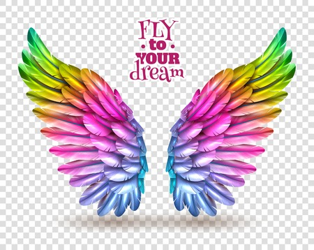 Pair of colorful bird wings set isolated on transparent background with shadow flat vector illustration
