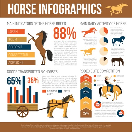 characteristics: Popular horse breeds infographic poster with characteristics uses statistic charts and care information abstract flat vector illustration
