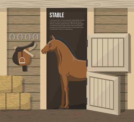 shetland: Horse breeding farm stable interior with standing in stall animal and hay forage supply abstract vector illustration