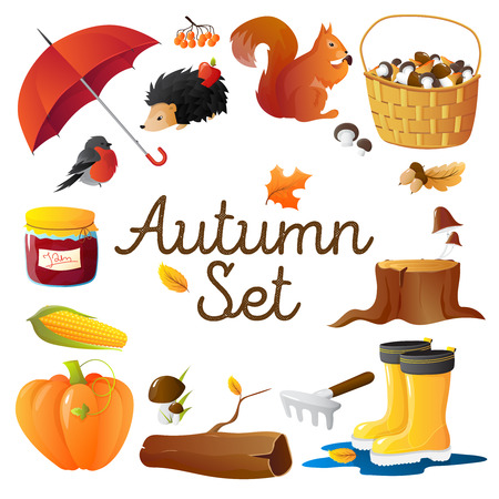 wellingtons: Round composition of autumn seasonal attributes with red umbrella  pumpkin mushrooms rakes and hedgehog isolated vector illustration
