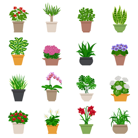 different types: Houseplant icons set with plants and flowers flat isolated vector illustration Illustration