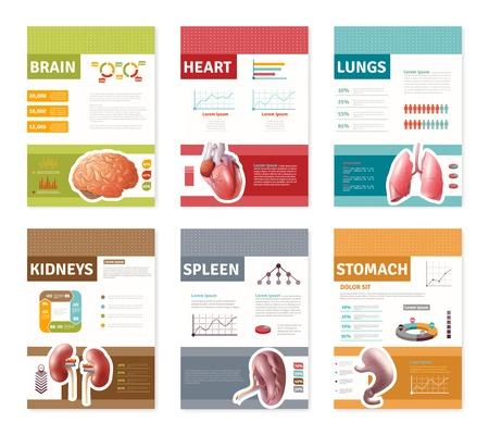 Kleine kleurrijke interne menselijke organen met beschrijving banners op een witte achtergrond plat vector illustratie