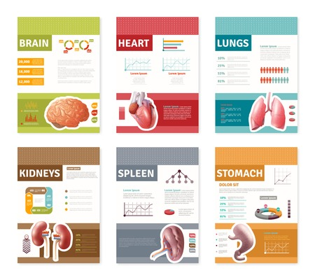 description: Small colorful internal human organs with description banners isolated on white background flat vector illustration