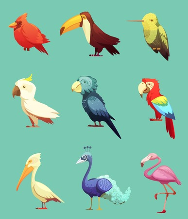 cockatoo: Exotic tropical paradise island birds retro cartoon style icons collection with toucan and cockatoo parrot isolate vector illustration