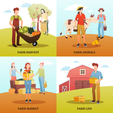 Flat design 2x2 design concept with families living and working on farm during autumn harvest time isolated vector illustration Illustration
