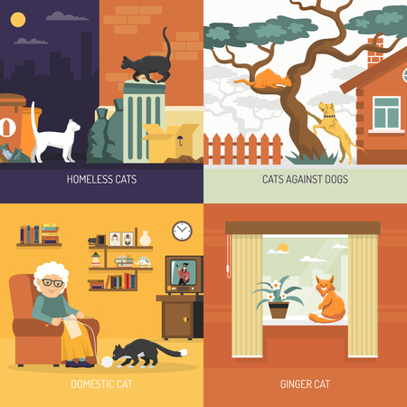 Breed cats 2x2 design concept with homeless characters outdoors and domestic pets in home interior flat vector illustration
