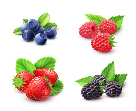 bog: Berry realistic set with strawberry raspberry and blackberry isolated vector illustration