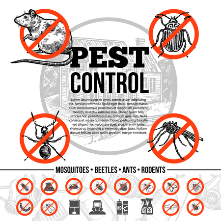 Schädlingsbekämpfung Infografiken mit Ikonen der Insekten Ratte und Mittel zum Schutz in Skizze Stil isoliert Vektor-Illustration