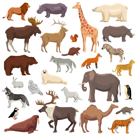 Big flat set of wild animals and birds living in various climatic zones isolated on white background vector illustration