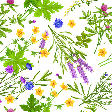 Flat seamless pattern with blooming herbs and wild flowers such as buttercup cornflower lavender and clover on white background vector illustration