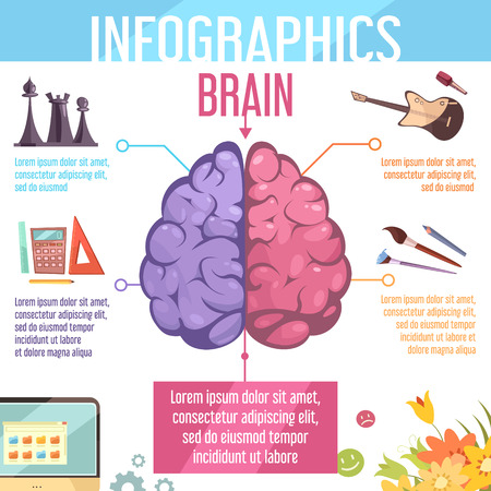hemispheres: Human brain left and right cerebral hemispheres functions infographic retro cartoon education learning aid poster vector illustration