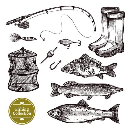 minnow: Fishing Hand Drawn Set Isolated Illustration