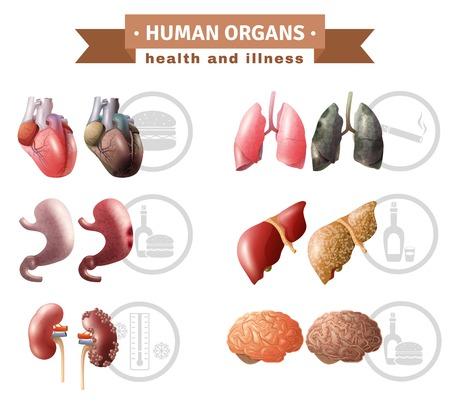 Menselijke organen gezondheid risicofactoren pictogrammen samenstelling medische poster met hart lever hersenen en longen educatieve vector illustratie