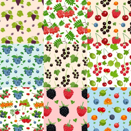 chicouté: Set of nine seamless berries patterns with twigs of red and black currant raspberry blueberry dewberry flat vector illustration Illustration