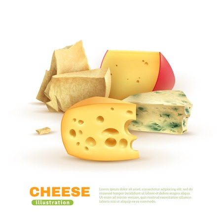 Colorful cheese template with dorblu edam maasdam parmesan on white background isolated vector illustration