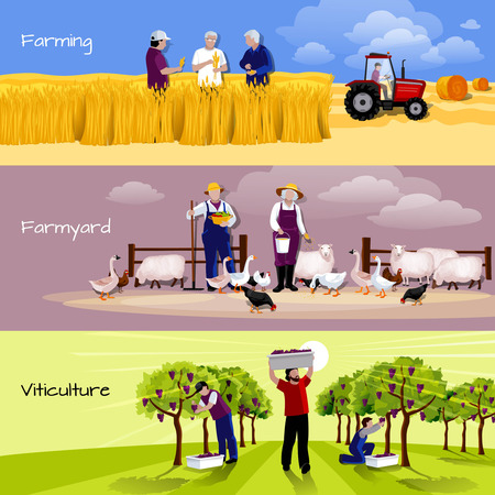 countryside: Farming people 3 flat horizontal banners set with farmyard vineyard and crops harvesting isolated vector illustration