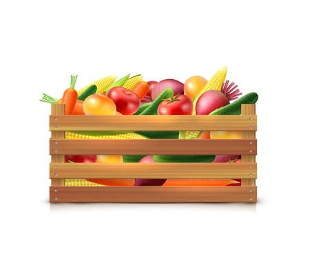 crates: Vegetables harvest template with carrot onion cucumber corn tomato beet in wooden box isolated vector illustration