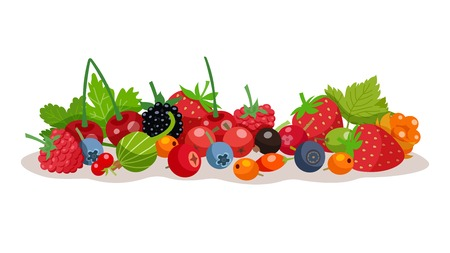 chicouté: Composition from forest and garden berries with strawberry bilberry raspberry cloudberry gooseberry elements flat vector illustration