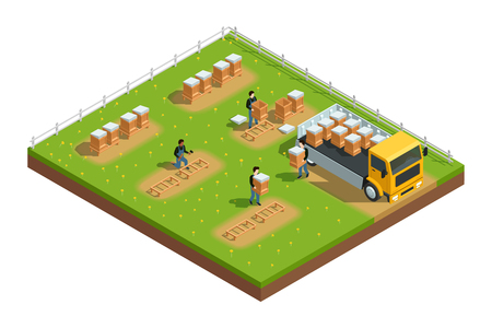 farm field: Isometric composition of scene with workers installing hives for beekeeping apiary on grass with flowers vector illustration Illustration