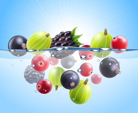 Realistic colorful berries background with black currant cranberry gooseberry blackberry dropped into water vector illustration