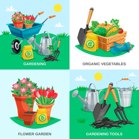 handcart: Garden 2x2 design concept set of organic vegetables garden flowers tools and inventory colored compositions flat vector illustration Illustration