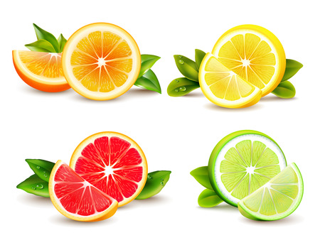 Citrus fruits halves and quarter wedges 4 realistic icons square with orange grapefruit lemon isolated vector illustration Vectores