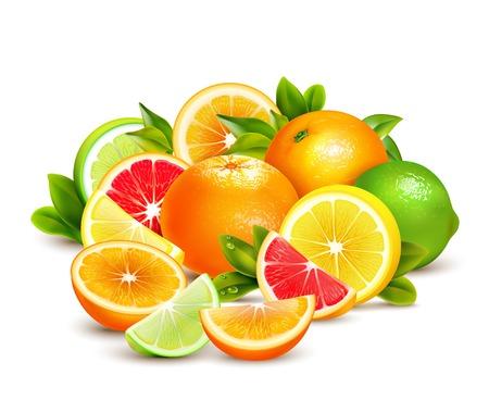Citrusvruchten hele helften en kwarten kleurrijke samenstelling met limoen grapefruit en sinaasappelen realistische vectorillustratie Stock Illustratie