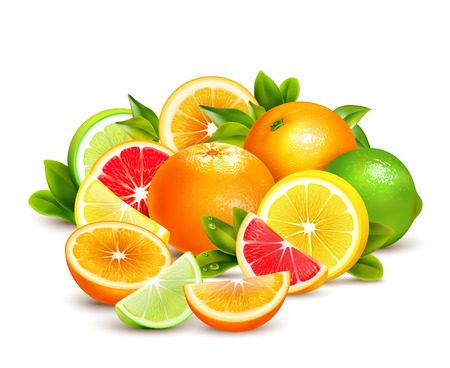Citrus fruit whole halves and quarters colorful composition with lime lemon grapefruit and oranges realistic vector illustration