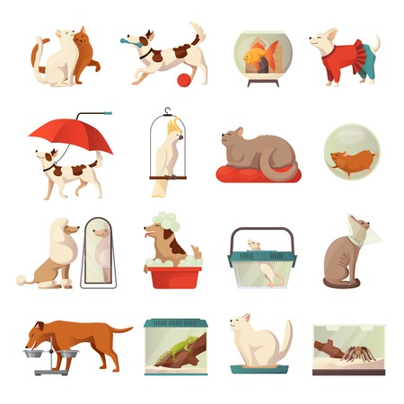 Pet shop icons set with cats and dogs flat isolated vector illustration Illustration