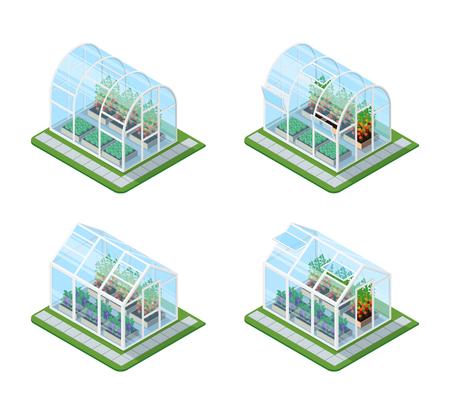 Ensemble isométrique à effet de serre en verre avec des produits agricoles croissants et des fleurs colorées Illustration vectorielle isolée