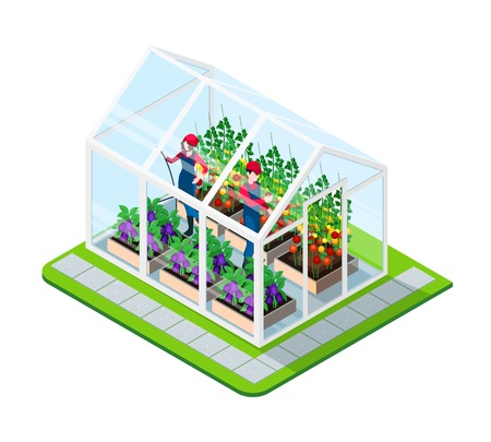 Greenhouse isometric concept with flowers and working people inside building isolated vector illustration Illustration