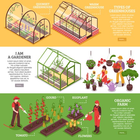 Three horizontal greenhouse banner set with I am gardener organic farm and types of greenhouses descriptions vector illustration Çizim
