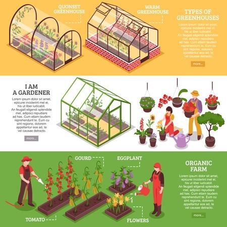 Tres banner horizontal de efecto invernadero establecido con Soy jardinero granja orgánica y tipos de invernaderos descripciones ilustración vectorial Foto de archivo - 72979942