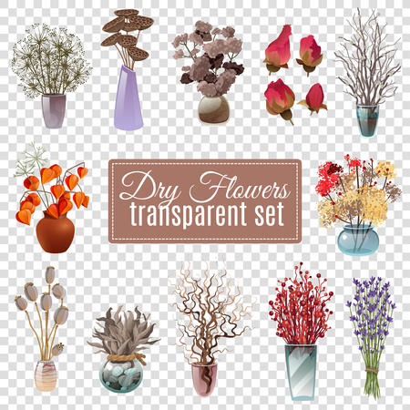 dry flowers: Set of dry flowers bouquets in vases of various shapes and sizes for decoration on transparent background flat vector illustration