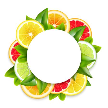 Snijd vers citrusvruchtenplakken en de bladeren omcirkelen de sier ronde kleurrijke natuurlijke realistische vectorillustratie van de kaderregeling