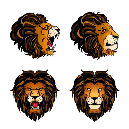 Ensemble coloré de quatre têtes de lion isolés dans différents angles et ambiances sur fond blanc Banque d'images - 74407715