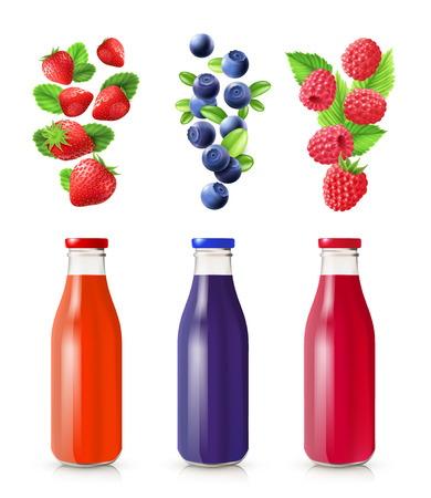 moor: Berry juice realistic set with bottles and berries isolated vector illustration