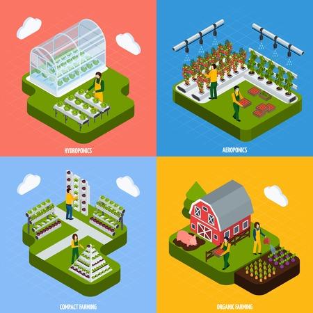 水耕栽培や空中栽培のコンセプト等尺性のアイコン設定記号分離ベクトル図を農業  イラスト・ベクター素材