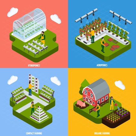 Hydroponics and aeroponics concept isometric icons set with farming symbols isolated vector illustration Ilustração