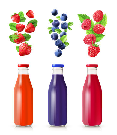 bog: Berry juice realistic set with bottles and berries isolated vector illustration