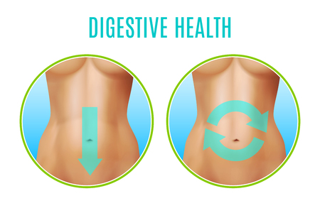vientre femenino: Digestive health realistic design including round icons with female belly and pointers on white background vector illustration