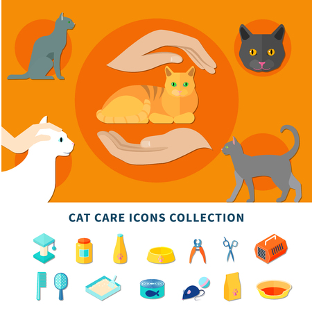 Pet care accessories for cats icons collection flat isolated vector illustration Stock Vector - 78921541