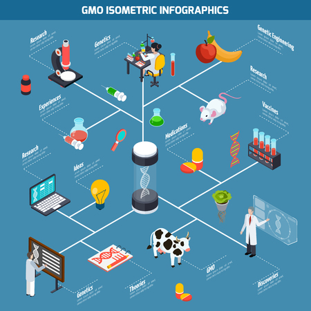 researches: GMO isometric infographics layout from theoretical researches through genetic experiments to discovery and safety testing vector illustration
