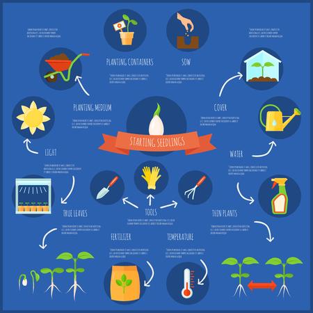 シンボル セットの水遣りと温度苗インフォ グラフィック フラット ベクトル図  イラスト・ベクター素材