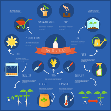 Seedling infographic set with watering and temperature symbols flat vector illustration