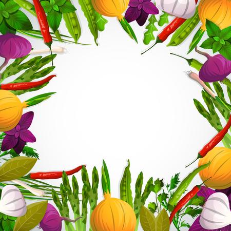 タマネギ ニンニク豆唐辛子バジル ホワイト バック グラウンド ベクトル図にルッコラ添え野菜とスパイスの装飾的なフレーム  イラスト・ベクター素材