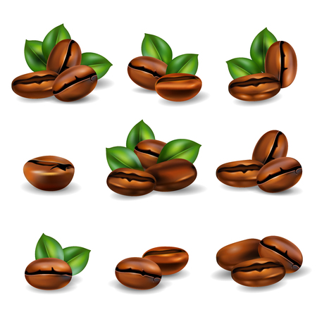 Roasted coffee beans with leaves realistic set isolated on white background vector illustration Illustration